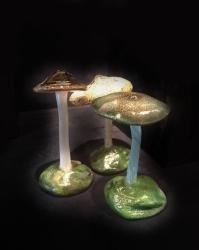 26_ulla_gustafsson_fungus